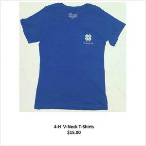 v-neck t-shirt - blue