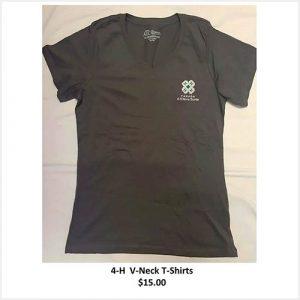 v-neck t-shirt - grey