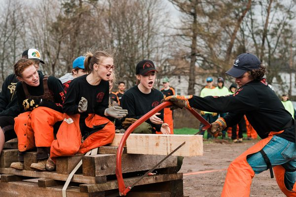 Woodsmen team sawing wood