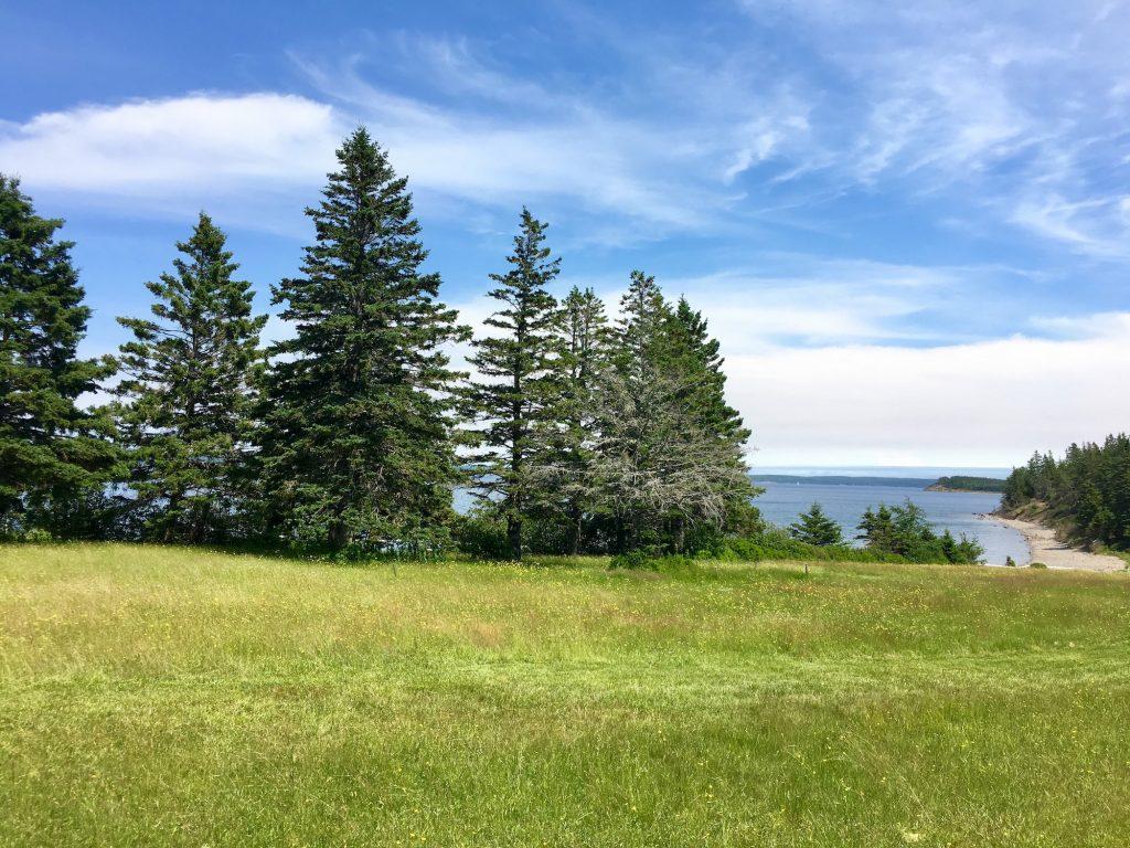 Camp Rankin View