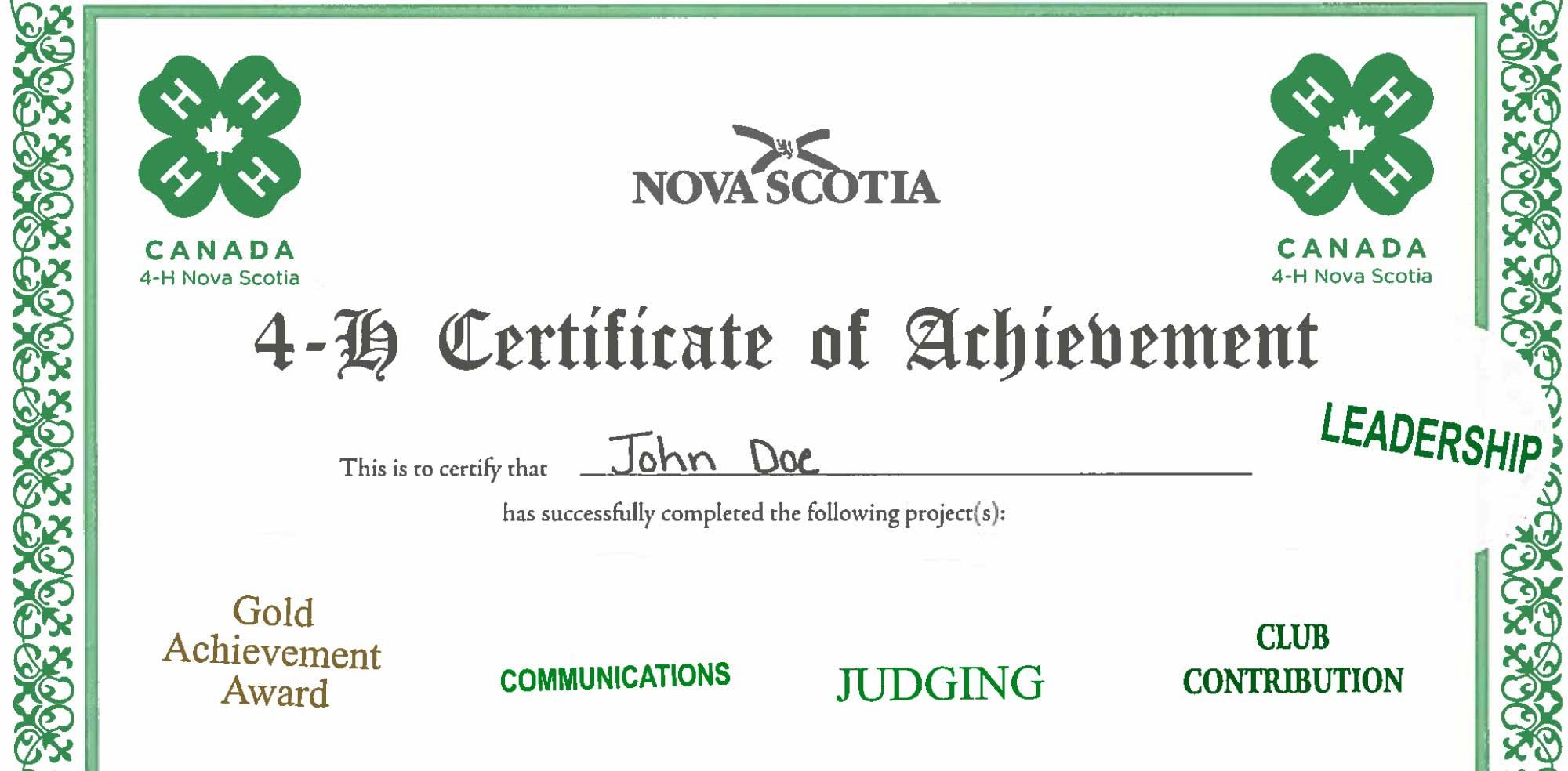 Sample of judging certificate
