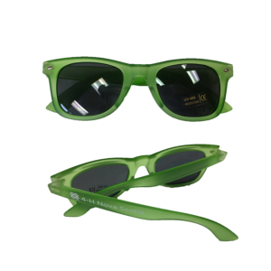Learn To Do By Doing Sunglasses - $5.00