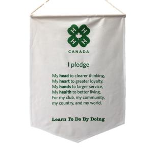 Pledge Banner - $45.00