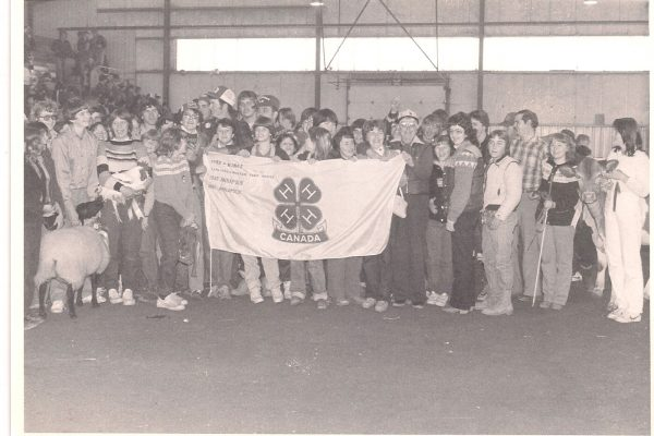 Top County - 1982