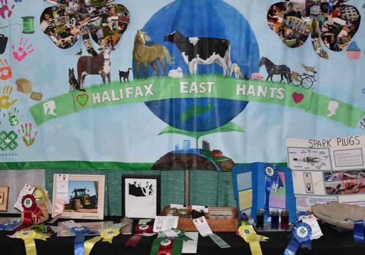 4-H Provincial Show East Hants